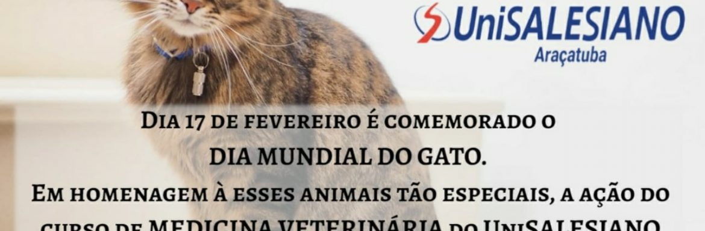 Iniciativa de Curso de Medicina Veterinária de Unisalesiano para o mês dos felinos.